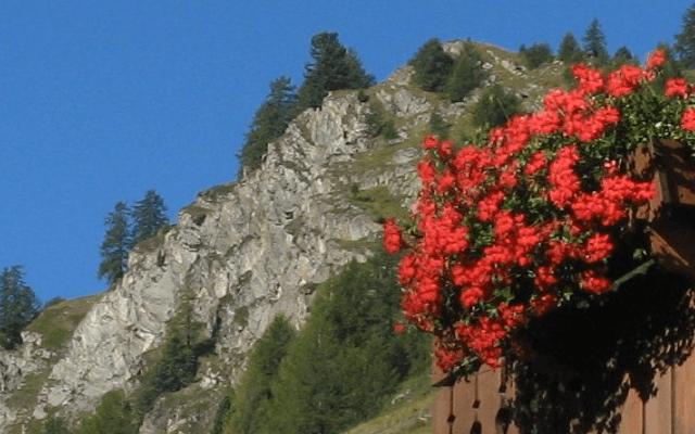 Luxury Swiss Ski Break