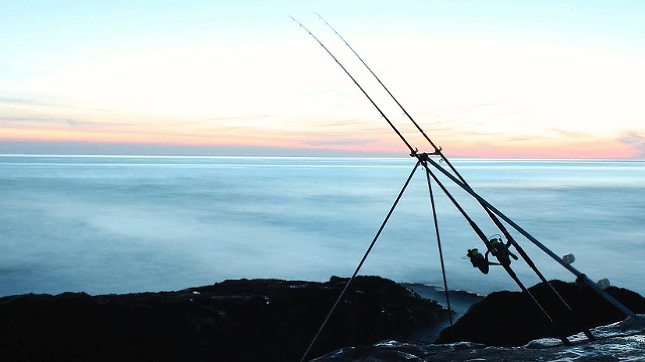 10 Best Saltwater Fishing Rods In 2020